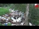 Экологическая катастрофа Свалка мусора в лесу Щелковского района Московской области