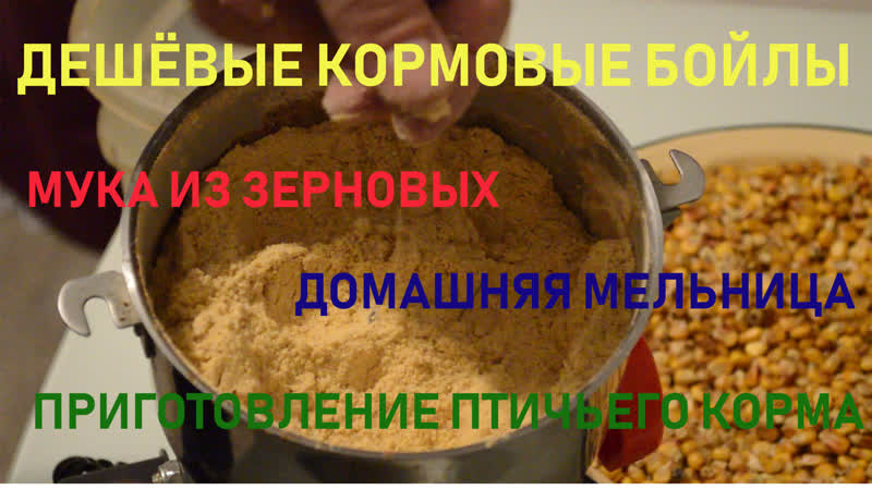 Катаю дешёвые кормовые бойлы. Часть 1.Подготовка муки из зерновых,домашняя мельница, приготовление птичьего корма.