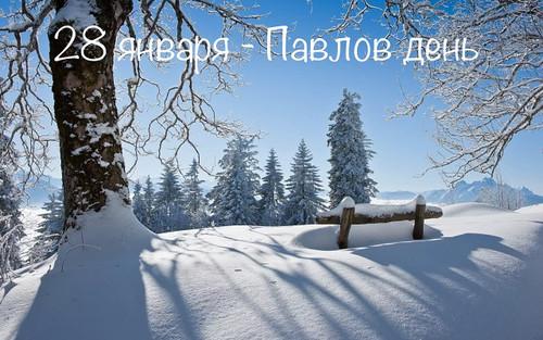 Павлов день. 28 января