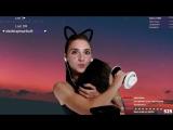 IRl - ASMR Cat