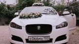 Свадьба Сергея и Александры 01.09.2018, белый Jaguar XF в свадебном украшении №77 @auto-na-prokat.ru