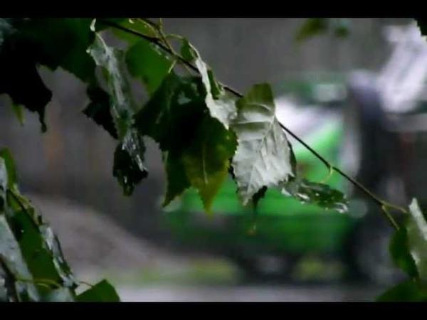 Асмолов. Осень жизни. Клип о грусти в жизни и об осени. Воспоминания. ПОЮ САМ