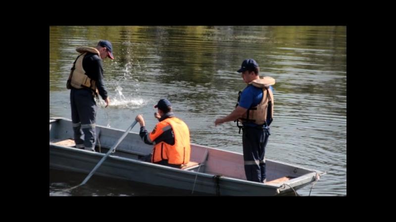 На Светлом озере ищут тело мужчины