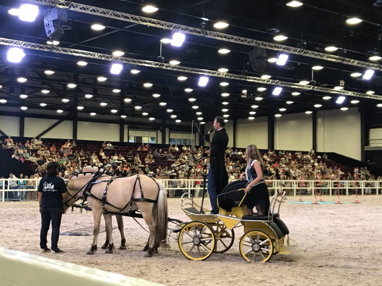 Horse-driving.ru - О езде в упряжи - Главная 4rnsN1emVa4