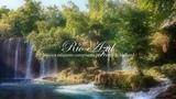 Прослушать Кельтская флейта, музыка арфы и фортепиано расслабляющая музыка, музыка для медитации и отдыха №15