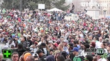 Denver 420 Rally 2014 with Hemp Vision TV