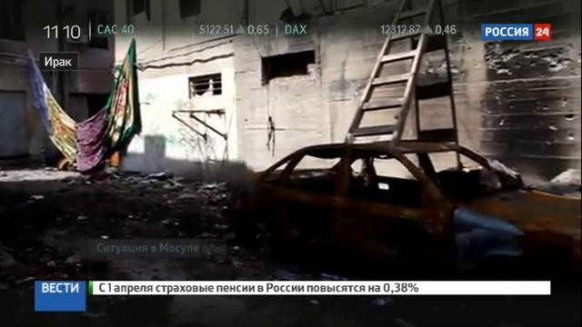 Новости на Россия 24 Иракцы намерены выбить исламистов из Мосула за несколько недель
