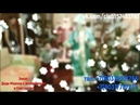 Музыкальная программа / Заказ Деда мороза с аккордеоном и Снегурочка