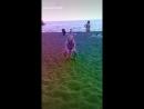 Sloymo на море приложения LIKE