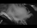 Вещество|The Substance Albert Hofmann's