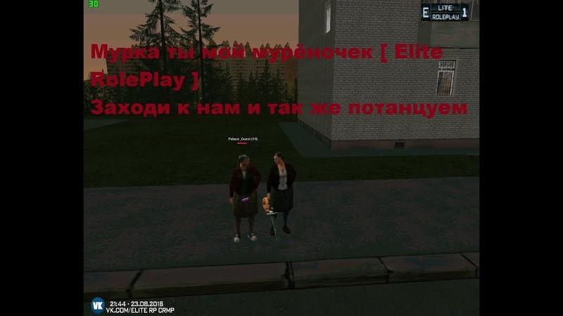 МУРКА, ТЫ МОЙ МУРЁНОЧЕК [Elite RolePlay•CRMP]