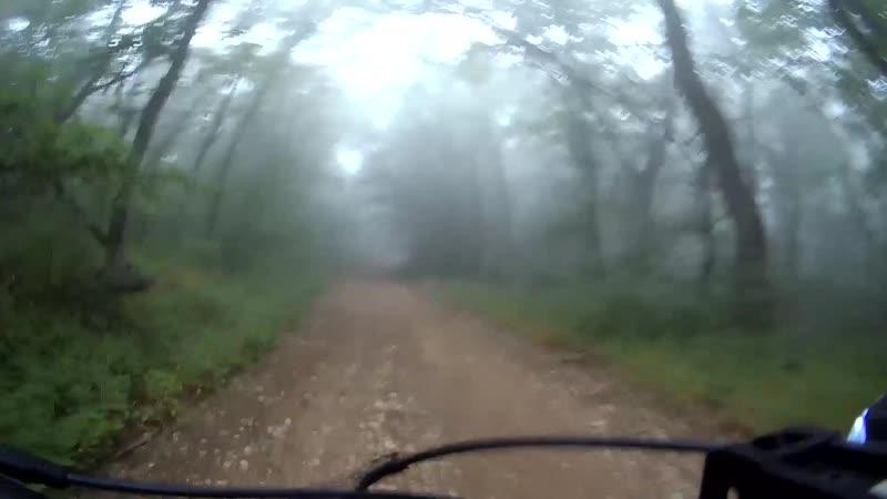 Едем с мыса Ая домой по туманному лесу
