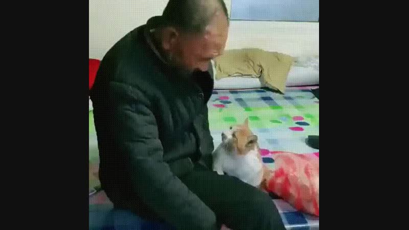 So cute, a very old man with his very old cat 💕💕
