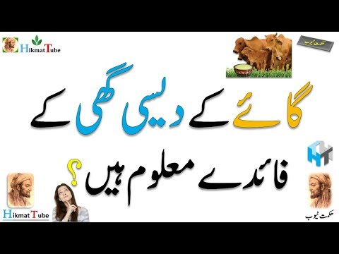 Cow Ghee / Natural Cow Desi Ghee / desi ghee benefits / ghee uses / how to use ghee for weight loss