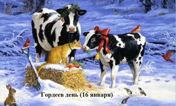 гордеев день. 16 января на руси крестьяне верили, что в этот день голодные ведьмы, возвращаясь с гулянья, доят коров с такой силой, что те погибают. чтобы избежать этого, над воротами