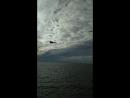 «Шаровары стирайте!»: Российский истребитель пронёсся рядом с кораблями ВМС Украины