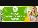 Аэро Флора Аэропоника Вертикальная гидропоника Фабрики растений Сити Фермеры