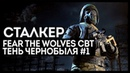 ДЕНЬ СТАЛКЕРА. Fear the volwes CBT и Тень Чернобыля 1