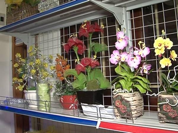 Hoa pha lê- Đặng Hoàng Lương Thu Thảo