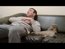 CUTE CATS not only a pet but also are the sweet friend of owners - Cutest Cat Videos Ever