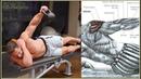 9 Shoulders Workout 9 Ejercicios para Entrenar Hombros Fitness Body
