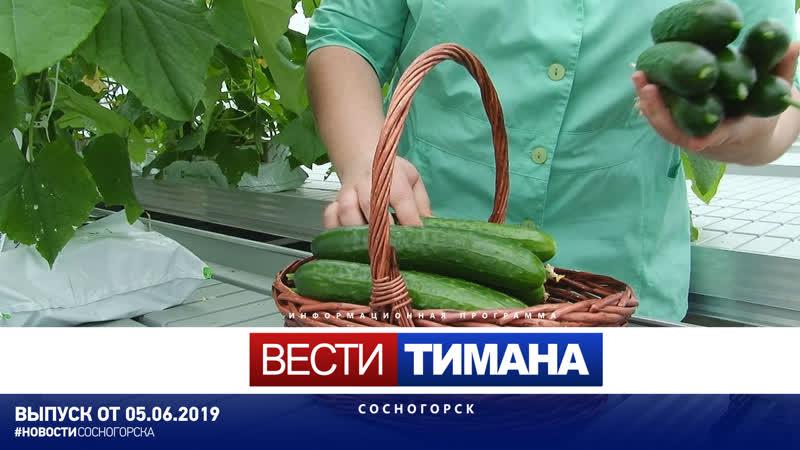 ✳ Вести Тимана. Сосногорск   05.06.2019