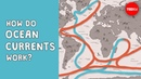 How do ocean currents work? - Jennifer Verduin