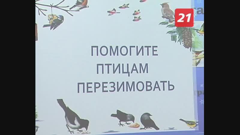 ТВ-21 Акция Помоги пернатым перезимовать