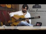 Antonio Rey in Solera Flamenca_ INTRO ALMA
