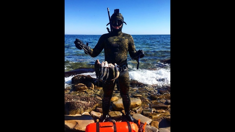 Подводная охота на окуня. Владивосток, о. Русский. б. Ахлестышева