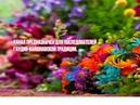 Шрила Прабхупада катха. Лектор Матаджи Рукмини, ученица Шрилы Прабхупады 18.09.2018г.