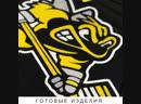 Детский хоккейный свитер для ХК Звезда и взрослый свитер для ХК Степаньково