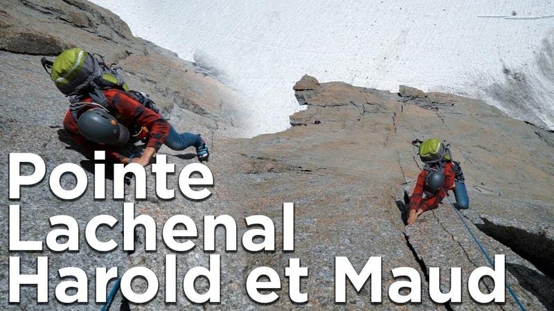 Harold et Maud Pointe Lachenal Chamonix Mont-Blanc escalade montagne alpinisme