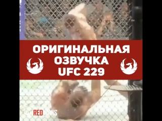 Всё, что осталось за кадром UFC229, ОРИГИНАЛЬНАЯ ОЗВУЧКА [MMAMEMES]