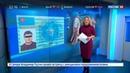 Новости на Россия 24 Мошенники продавали иностранцам паспорта несуществующего государства
