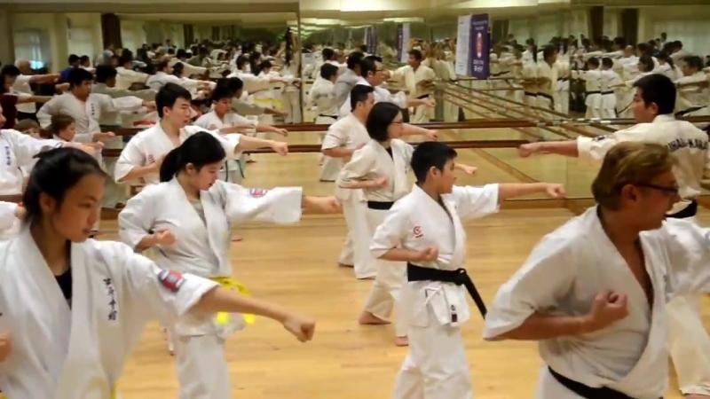Ashihara Karate Master Class with Kancho Ashihara Hidenori