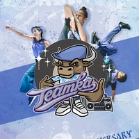 "Логотип **""TEAMKA-2018""(МОСКВА) - 15 лет!**"