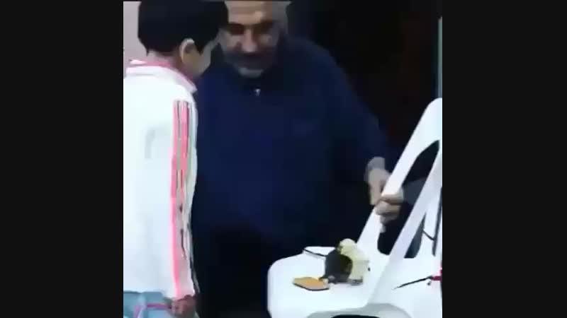 Дал декъал войла хьо