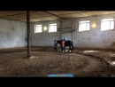 Катаемся на любимой лошадке ))