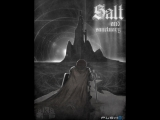 Стрим игры  Salt and sanctuary