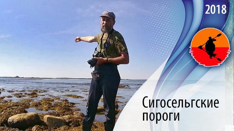 14 Сигосельгские морские пороги | Амбарный - Кузема 2018 | Приключения на байдарке