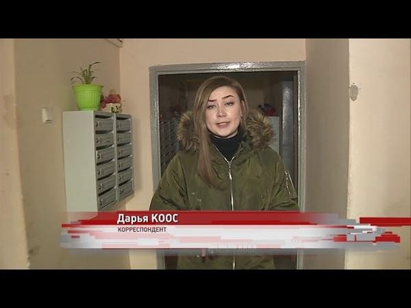 Жители многоэтажки в Заволжском районе страдают от трупного запаха: в подвале - крысы