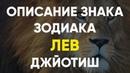Описание Знака зодиака Лев Джйотиш