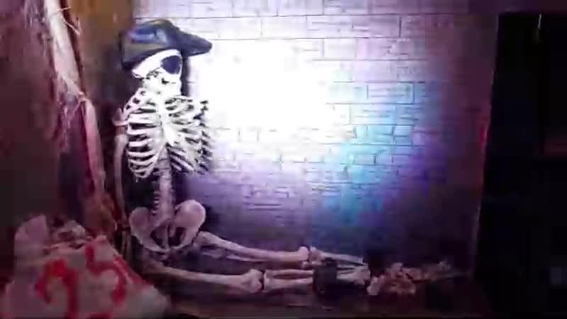 Приключения пиратов Бобби и Билли