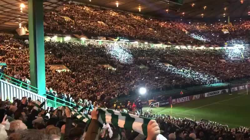 YNWA light show at Paradise