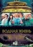 Водная жизнь / The Life Aquatic with Steve Zissou / Трейлер