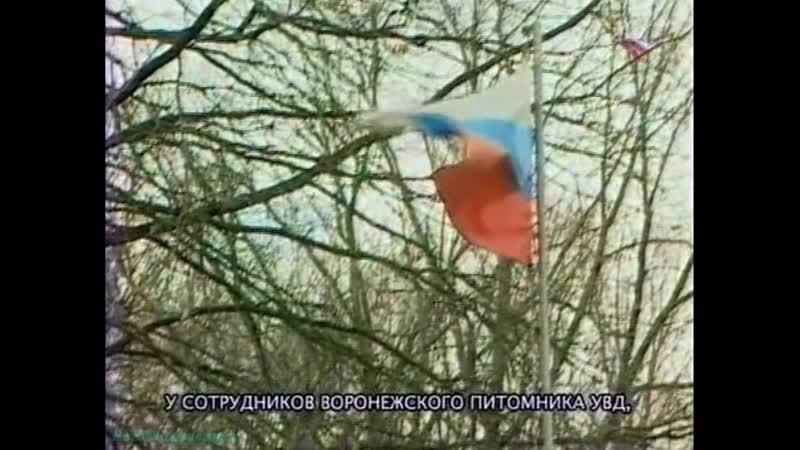 Оружие России Псы специального назначения Документальный кинология ВГТРК 2005