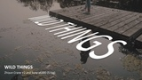 Wild Things - Zhiyun Crane V2 And Sony a6300 (S-log 2)