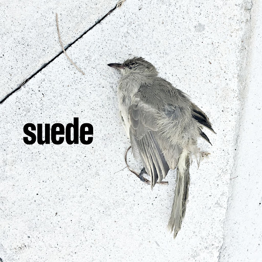 Suede альбом The Invisibles