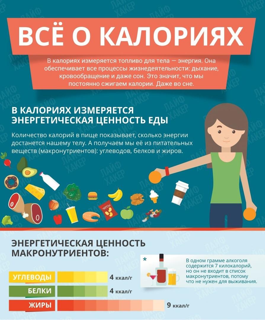 Все о калориях